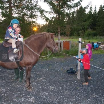 Frida agerar barnkalashäst, 2010