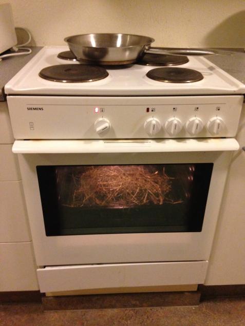 TS-bestämning av hö i köket.